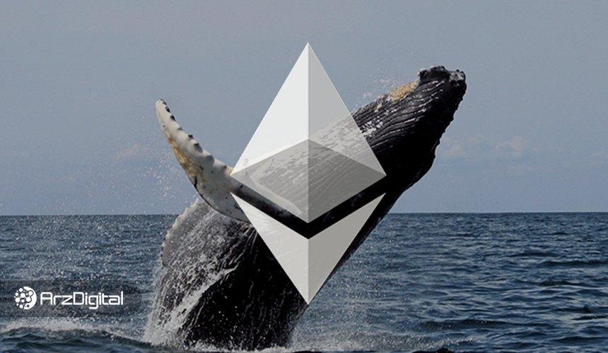 افزایش ذخیره اتر توسط نهنگها؛ منتظر جهش قیمت باشیم؟